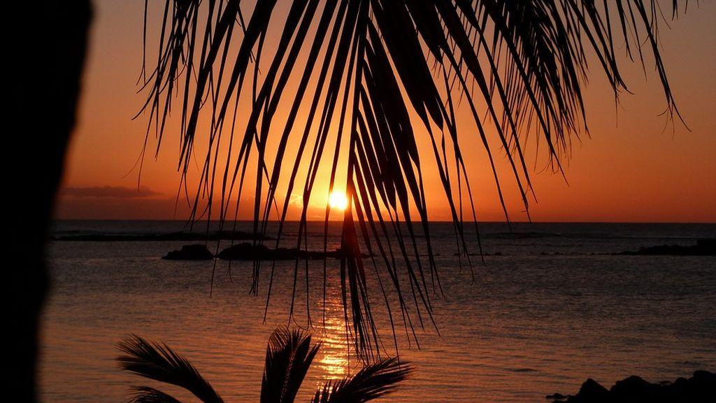 dove si trovano le mauritius